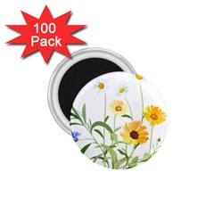 Flowers Flower Of The Field 1 75  Magnets (100 Pack)  by Nexatart