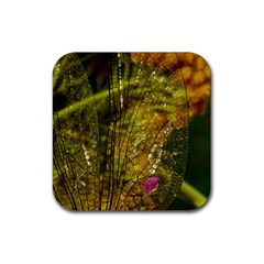 Dragonfly Dragonfly Wing Insect Rubber Square Coaster (4 Pack)  by Nexatart