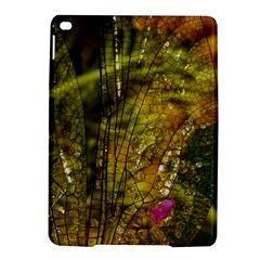Dragonfly Dragonfly Wing Insect Ipad Air 2 Hardshell Cases by Nexatart