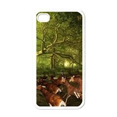 Red Deer Deer Roe Deer Antler Apple iPhone 4 Case (White)