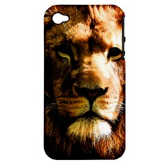 Lion  Apple Iphone 4/4s Hardshell Case (pc+silicone) by Valentinaart