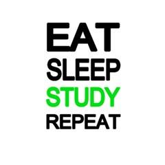 Eat Sleep Study Repeat 5 5  X 8 5  Notebooks by Valentinaart