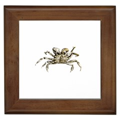 Dark Crab Photo Framed Tiles by dflcprints