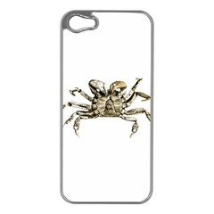 Dark Crab Photo Apple Iphone 5 Case (silver) by dflcprints
