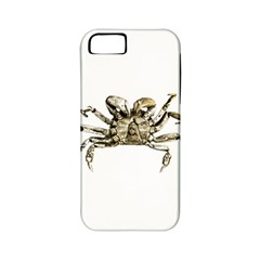 Dark Crab Photo Apple Iphone 5 Classic Hardshell Case (pc+silicone) by dflcprints
