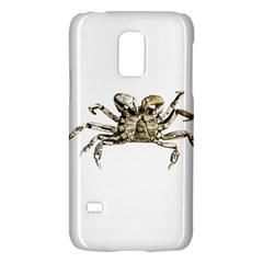Dark Crab Photo Galaxy S5 Mini by dflcprints