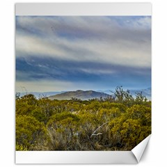 Patagonian Lanscape Scene, Santa Cruz, Argentina Canvas 20  X 24   by dflcprints