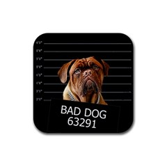 Bed Dog Rubber Square Coaster (4 Pack)  by Valentinaart