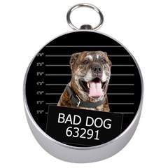 Bad Dog Silver Compasses by Valentinaart