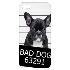 Bad Dog Apple Iphone 5 Hardshell Case by Valentinaart