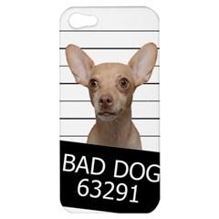 Bad Dog Apple Iphone 5 Hardshell Case by Valentinaart