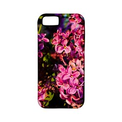 Lilacs Apple Iphone 5 Classic Hardshell Case (pc+silicone) by dawnsiegler