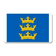 Banner Of Lordship Of Ireland (1177 1542) Magnet (rectangular) by abbeyz71