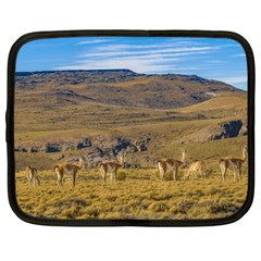 Group Of Vicunas At Patagonian Landscape, Argentina Netbook Case (large) by dflcprints