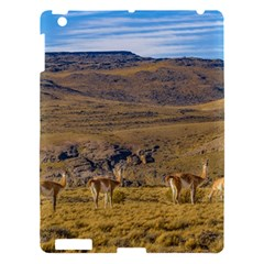 Group Of Vicunas At Patagonian Landscape, Argentina Apple Ipad 3/4 Hardshell Case by dflcprints