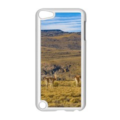 Group Of Vicunas At Patagonian Landscape, Argentina Apple Ipod Touch 5 Case (white) by dflcprints
