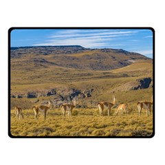 Group Of Vicunas At Patagonian Landscape, Argentina Double Sided Fleece Blanket (small)  by dflcprints
