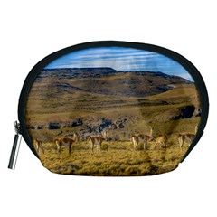 Group Of Vicunas At Patagonian Landscape, Argentina Accessory Pouches (medium)  by dflcprints