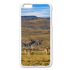 Group Of Vicunas At Patagonian Landscape, Argentina Apple Iphone 6 Plus/6s Plus Enamel White Case by dflcprints