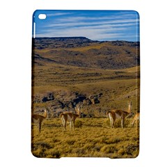 Group Of Vicunas At Patagonian Landscape, Argentina Ipad Air 2 Hardshell Cases by dflcprints