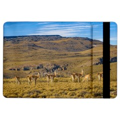 Group Of Vicunas At Patagonian Landscape, Argentina Ipad Air 2 Flip by dflcprints