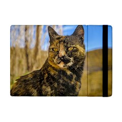 Adult Wild Cat Sitting And Watching Apple Ipad Mini Flip Case by dflcprints