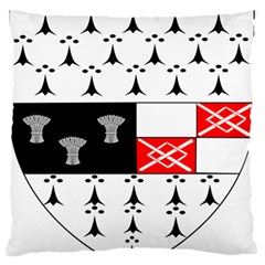County Kilkenny Coat Of Arms Large Flano Cushion Case (two Sides) by abbeyz71