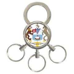 Coat Of Arms Of Belfast  3 Ring Key Chains by abbeyz71