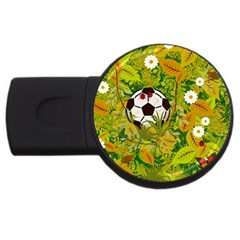 Ball On Forest Floor Usb Flash Drive Round (2 Gb) by linceazul