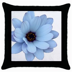 Daisy Flower Floral Plant Summer Throw Pillow Case (black) by Nexatart