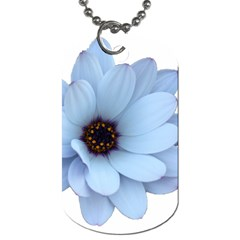 Daisy Flower Floral Plant Summer Dog Tag (two Sides) by Nexatart