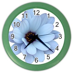 Daisy Flower Floral Plant Summer Color Wall Clocks by Nexatart