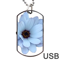 Daisy Flower Floral Plant Summer Dog Tag Usb Flash (two Sides) by Nexatart