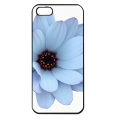 Daisy Flower Floral Plant Summer Apple Iphone 5 Seamless Case (black) by Nexatart