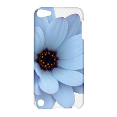 Daisy Flower Floral Plant Summer Apple Ipod Touch 5 Hardshell Case by Nexatart