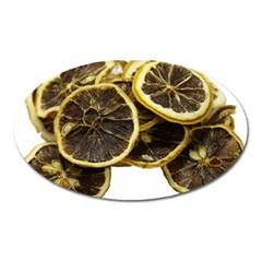 Lemon Dried Fruit Orange Isolated Oval Magnet by Nexatart