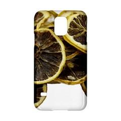 Lemon Dried Fruit Orange Isolated Samsung Galaxy S5 Hardshell Case  by Nexatart