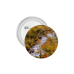 Colored Forest Landscape Scene, Patagonia   Argentina 1 75  Buttons by dflcprints