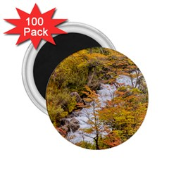 Colored Forest Landscape Scene, Patagonia   Argentina 2 25  Magnets (100 Pack)  by dflcprints
