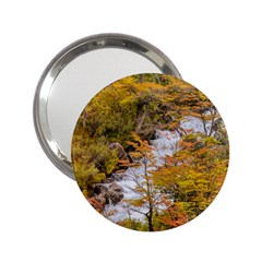 Colored Forest Landscape Scene, Patagonia   Argentina 2 25  Handbag Mirrors by dflcprints