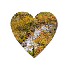 Colored Forest Landscape Scene, Patagonia   Argentina Heart Magnet by dflcprints