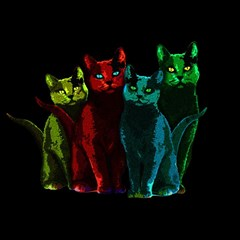 Cats Magic Photo Cubes by Valentinaart
