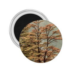 Landscape Scene Colored Trees At Glacier Lake  Patagonia Argentina 2 25  Magnets by dflcprints