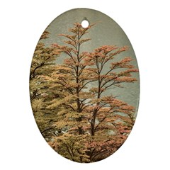 Landscape Scene Colored Trees At Glacier Lake  Patagonia Argentina Oval Ornament (two Sides) by dflcprints