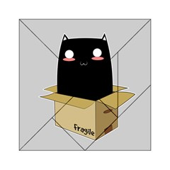 Black Cat In A Box Acrylic Tangram Puzzle (6  X 6 ) by Catifornia