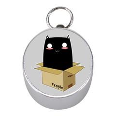 Black Cat In A Box Mini Silver Compasses by Catifornia