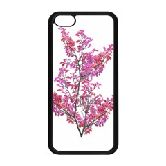 Colorful Cute Floral Design Pretty Floral Photo Manipulation Design In Vivid Magenta And Red Colors Plants, Flora, Design, Tree, Leaves, Nature, Plants, Natural, Botanical, Botanic, Magenta, Vivid, Co by dflcprints