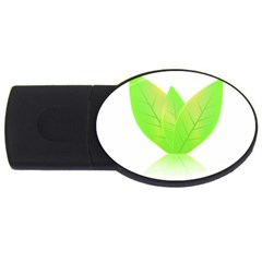Leaves Green Nature Reflection Usb Flash Drive Oval (4 Gb) by Nexatart