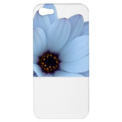 Daisy Flower Floral Plant Summer Apple Iphone 5 Hardshell Case by Nexatart