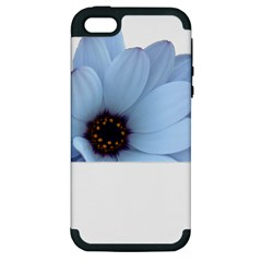 Daisy Flower Floral Plant Summer Apple Iphone 5 Hardshell Case (pc+silicone) by Nexatart
